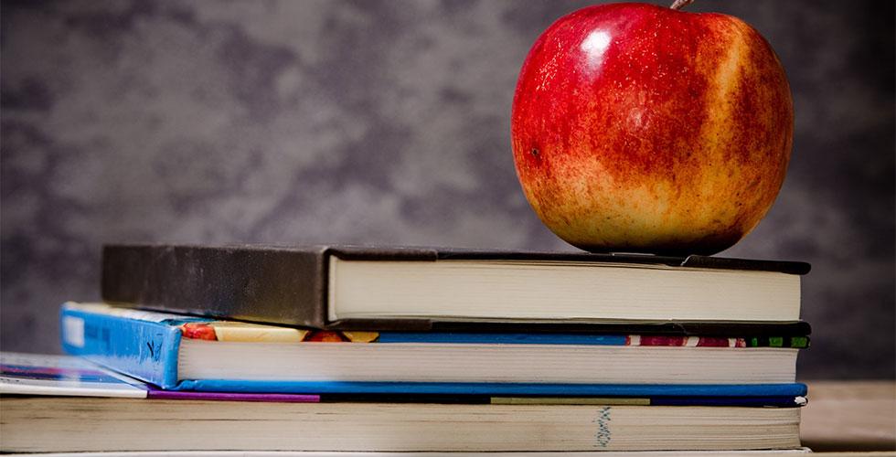 p1 - Die Heimunterricht Debatte: Warum steigt Heimunterricht in der Popularität?